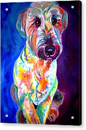 Briard - Albert Acrylic Print by Alicia VanNoy Call
