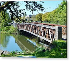 Bridge At Cox Creek Acrylic Print by VLee Watson