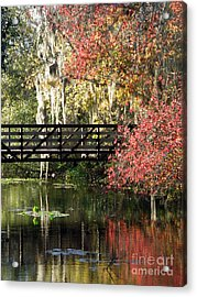 Bridge At Sawgrass Lake Park Acrylic Print by Rose  Hill