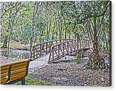 Bridge  Acrylic Print by Chauncy Holmes