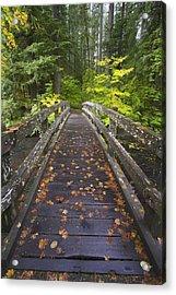 Bridge In A Park Acrylic Print by Craig Tuttle