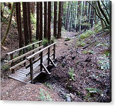 Bridge In The Redwoods Acrylic Print