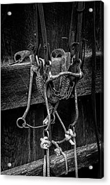 Bridle And Barn In Black And White Acrylic Print