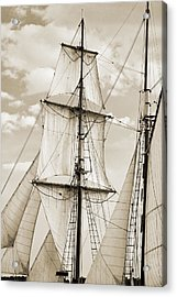 Brigantine Tallship Fritha Sails And Rigging Acrylic Print by Dustin K Ryan