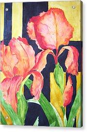 Bright And Bold Acrylic Print