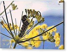 Bright Caterpillar Acrylic Print