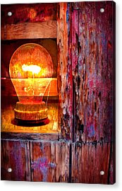 Acrylic Print featuring the photograph Bright Idea by Skip Hunt