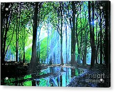 Bright Light In Dark Wood Acrylic Print