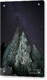 Bright Night Acrylic Print by Jeff Kolker