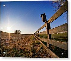 Acrylic Print featuring the photograph Bright Sky by Ryan Shapiro