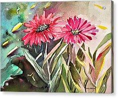 Bright Spring Daisies Acrylic Print