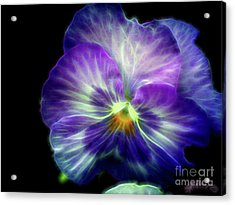 Brilliance  Acrylic Print
