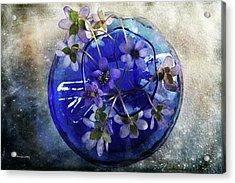 Brilliant Blue Acrylic Print by Randi Grace Nilsberg