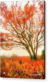 Acrylic Print featuring the painting Brilliant Orange Autumn Fall Colors Tree Ap by Dan Carmichael