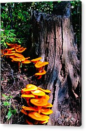 Brilliant Orange Acrylic Print
