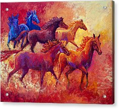 Bring The Mares Home Acrylic Print by Marion Rose