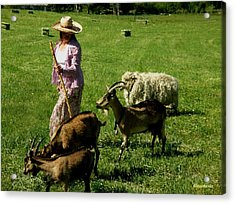 Acrylic Print featuring the painting Bringing Home The Flock by Anastasia Savage Ealy