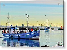Bringing In The Day's Catch Acrylic Print