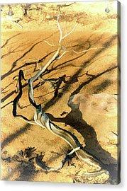 Brins Mesa 07-100 Burnt Acrylic Print by Scott McAllister
