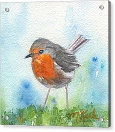 British Robin Acrylic Print