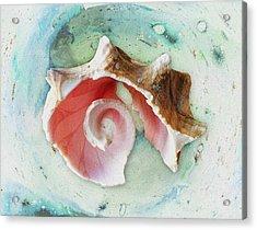 Broken Shell Acrylic Print by Anastasiya Malakhova
