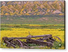 Acrylic Print featuring the photograph Broken Wagon In A Field Of Flowers by Marc Crumpler