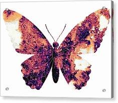 Broken Wings Acrylic Print