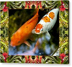 Bromeliad Koi Acrylic Print by Bell And Todd