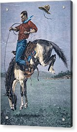 Bronco Buster Acrylic Print by Frederic Remington
