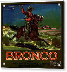Bronco Redlands California Acrylic Print by Peter Gumaer Ogden