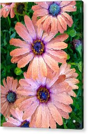 Acrylic Print featuring the photograph Bronze Beauty  by Heidi Smith