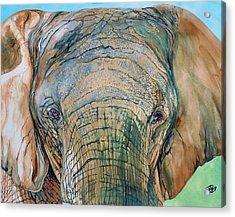 Bronze Elephant Acrylic Print