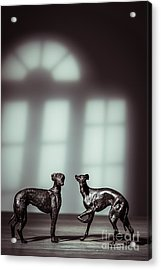 Bronze Greyhound Figures Acrylic Print by Amanda Elwell