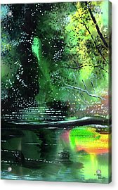 Brook Acrylic Print by Anil Nene