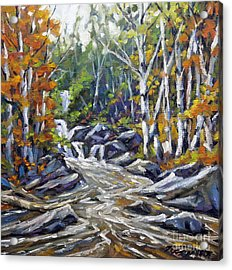 Brook Traversing Wood Acrylic Print by Richard T Pranke