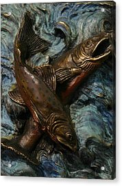 Brook Trout Acrylic Print by Dawn Senior-Trask