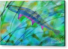 Brook Trout In The Stream Acrylic Print by Terril Heilman
