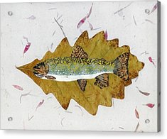 Brook Trout Acrylic Print by Ralph Root