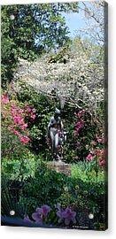 Brookgreen 3 Acrylic Print by Gordon Mooneyhan