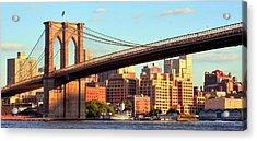 Brooklyn Acrylic Print by Mitch Cat