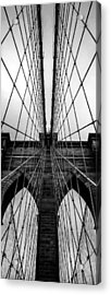 Brooklyn's Web Acrylic Print by Az Jackson
