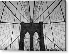 Brooklyn's Web Acrylic Print by Joshua Francia