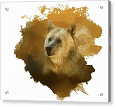 Acrylic Print featuring the painting Brown Bear by Steven Richardson