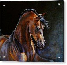 Brown Beauty - Arabian Stallion Acrylic Print by Anna Franceova