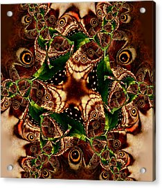 Brown Butterfly Collage Acrylic Print by Irma BACKELANT GALLERIES