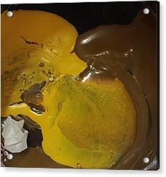 Brown Dolphin Eating A Lemon Acrylic Print