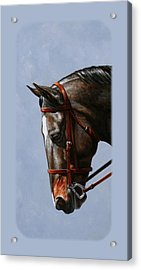 Brown Dressage Horse Phone Case Acrylic Print by Crista Forest