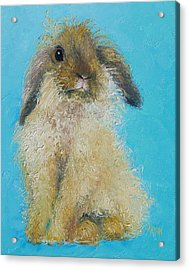 Brown Easter Bunny Acrylic Print by Jan Matson