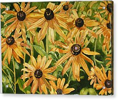 Brown Eyes Acrylic Print by Helen Shideler