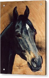 Brown Horse  Tingeys Star Acrylic Print by JoAnne Corpany